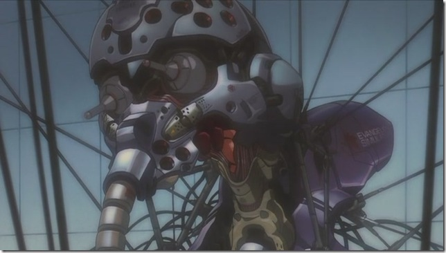 [POPGO][FREEWIND][Evangelion-1.0_You_Are_(Not)_Alone][DVDRIP][H.264_DD][(047216)20-07-06]